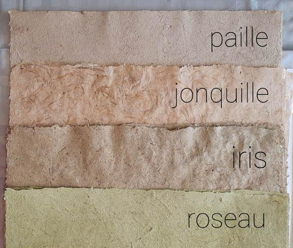 Papier végétal Paille / Jonquille / Iris / Roseau
