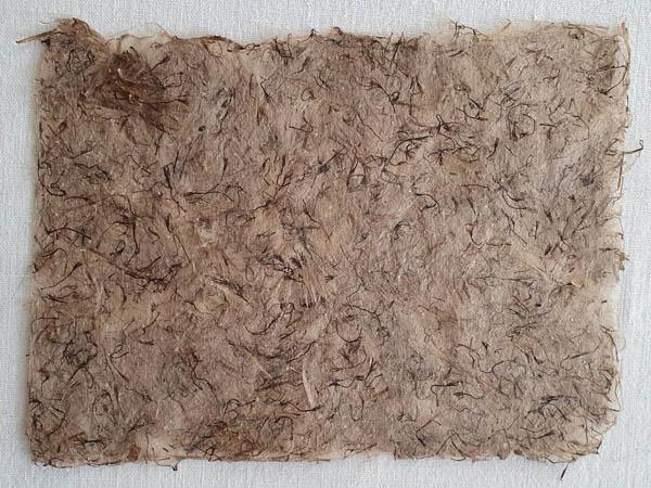 Papier Végétal de Chardon