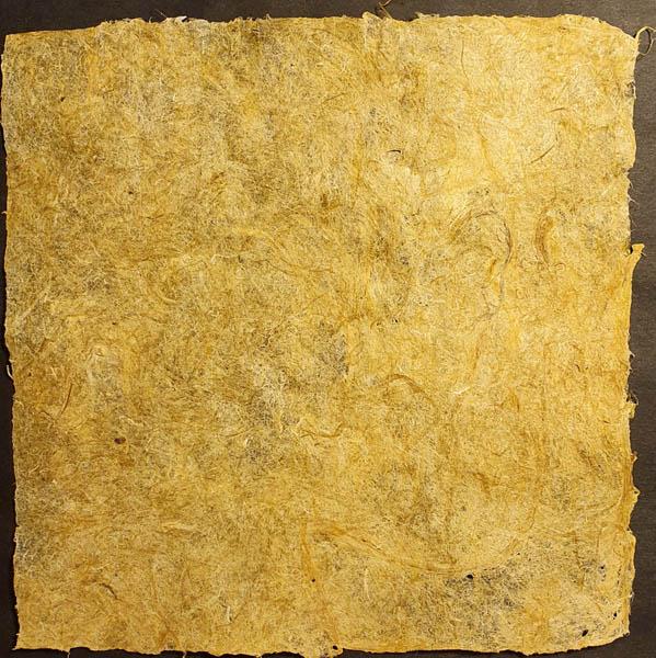 Papier Végétal de Jonquille