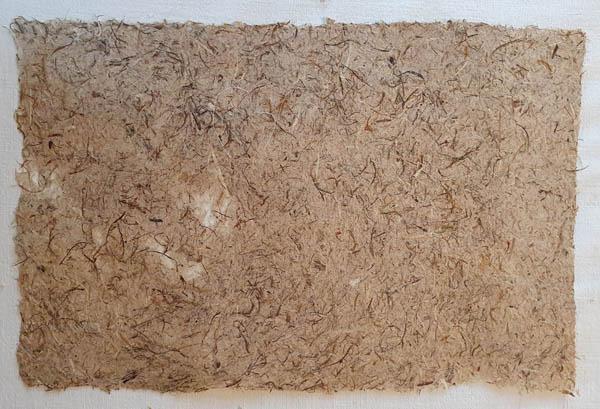 Feuille de papier recyclé de Papier végétal