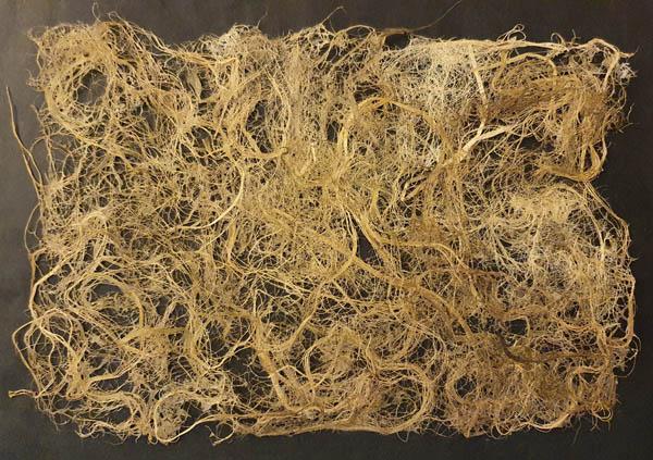 Papier végétal de Muguet