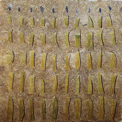 stages fabrication papier végétal